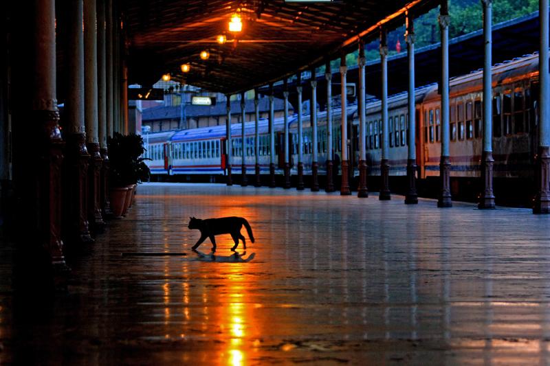 eシルケジ駅2008