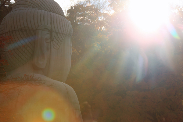 10壺阪寺