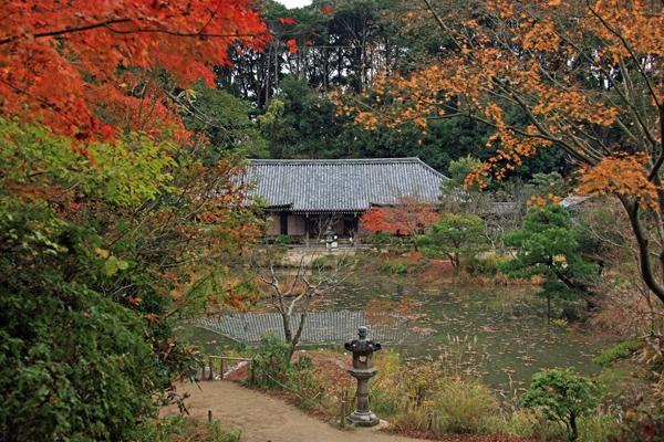 19浄瑠璃寺