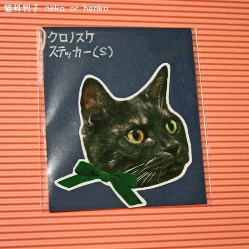 20121208-170842-001.jpg