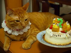 誕生日こじゅろう