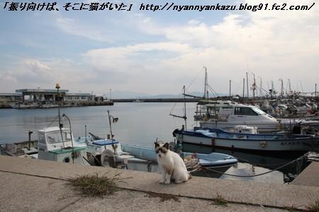 IMG_6445_blog.jpg