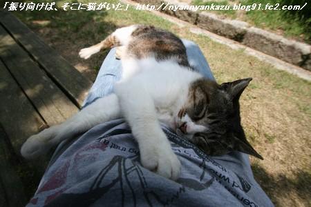 IMG_7914_blog.jpg