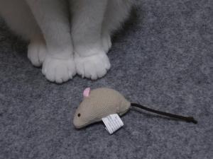 ネズミ2縮小