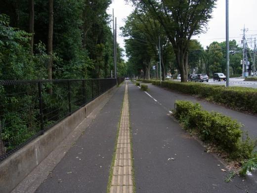 まっすぐ道路2縮小