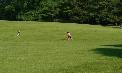 公園い2縮小