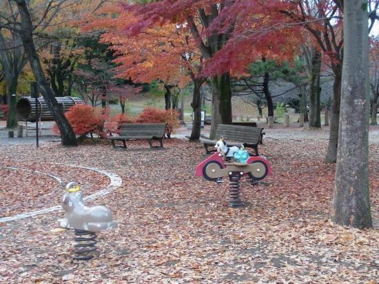 公園全体1縮小