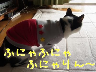 洋服ぴょん1縮小