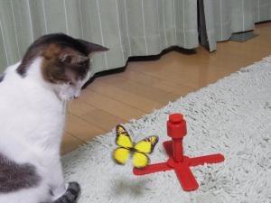 おもちゃひめ1縮小