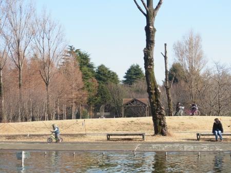 ひろし公園縮小4