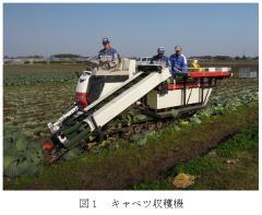 キャベツ収穫マシン
