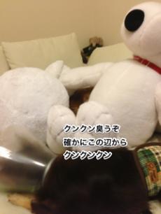 蜀咏悄+Skitch+繧ュ繝」繝ウ繝舌せ+(5)_convert_20130402234527