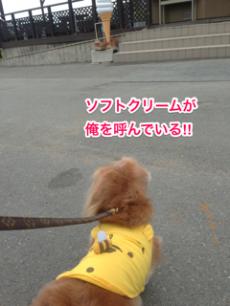 蜀咏悄+Skitch+繧ュ繝」繝ウ繝舌せ+(10)_convert_20130602234114