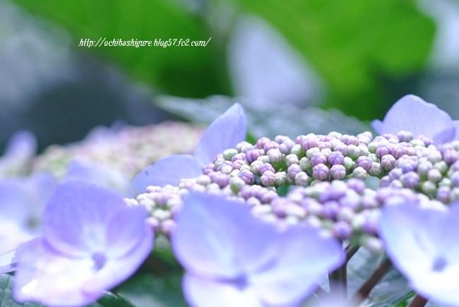 2012_06_23_1.jpg