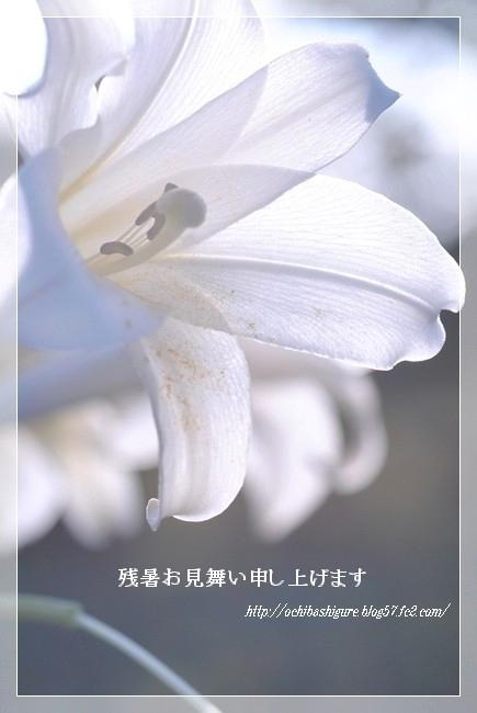 2012_08_22_01.jpg