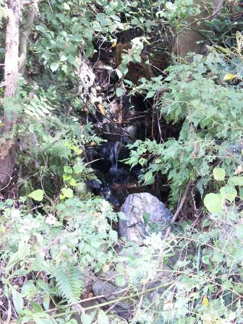 6-4御倫山の水2