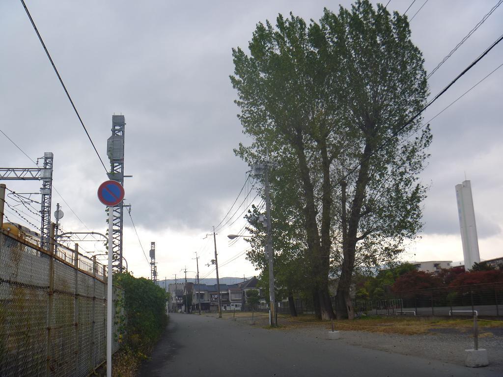 P1130052 a