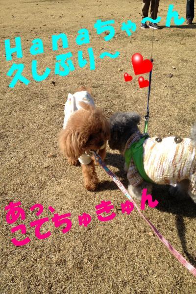 006_convert_20121230224354.jpg