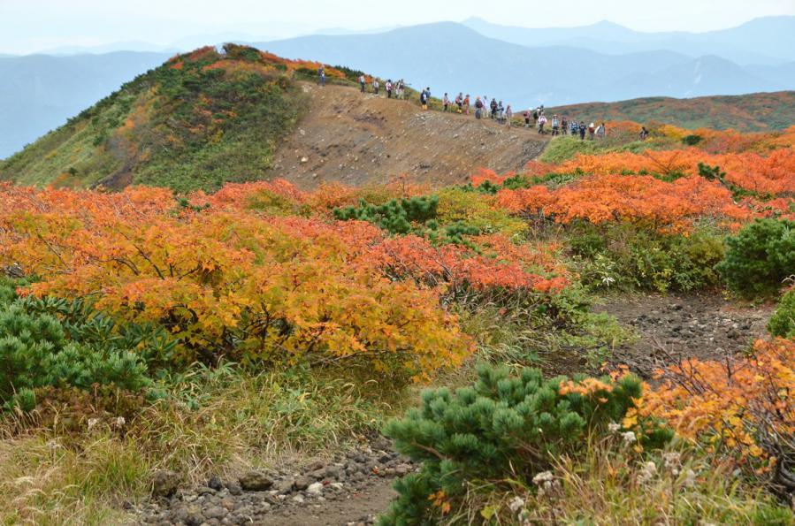 栗駒山10.6 163-2s