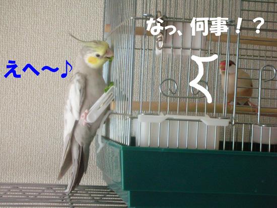 風(・・;)