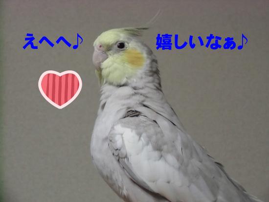 嬉しいね、風(~o~)