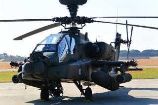岐阜基地航空祭 AH-64D アパッチ ロングボウ