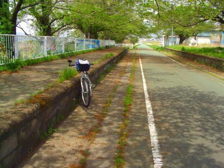旧雨引駅3