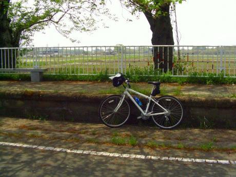 旧雨引駅2