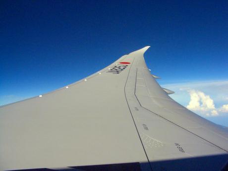787wing201201.jpg