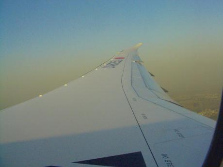 787wing201202.jpg