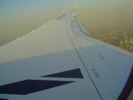 787wing201203.jpg