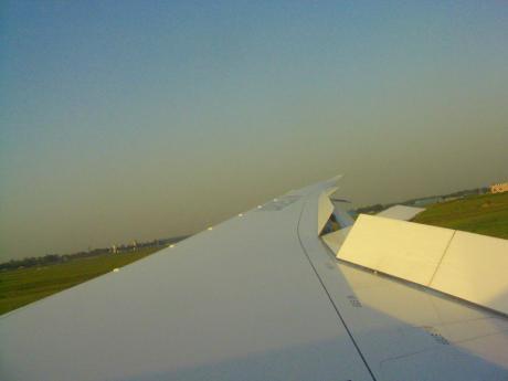 787wing201204.jpg