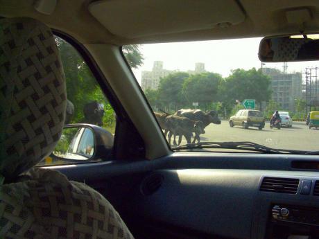 Delhi201207.jpg