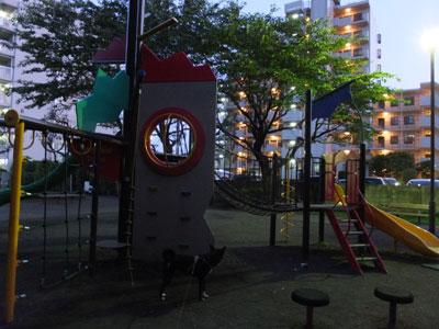 yugatanosannpo7-9-2.jpg