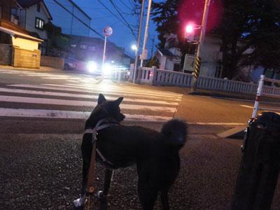 yugatanosannpo7-9-3.jpg