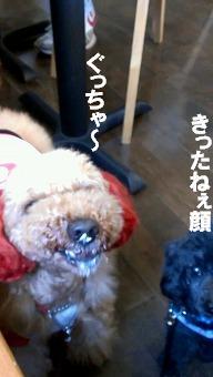 VIDEO0009_0000051144.jpg
