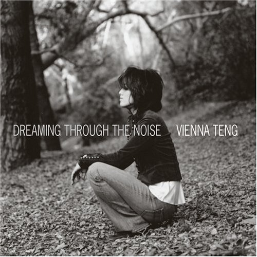 album-dreaming-through-the-noise.jpg