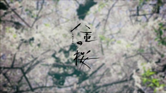 yaenosakura_01_015.jpg