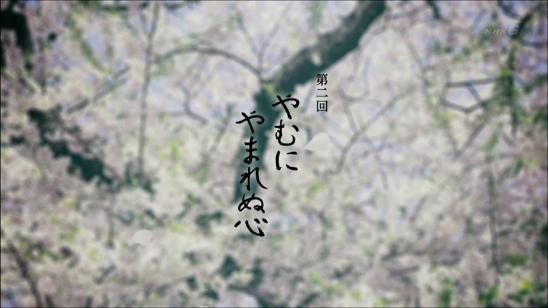 yaenosakura_02_003.jpg