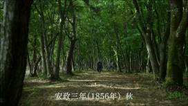 yaenosakura_02_011.jpg