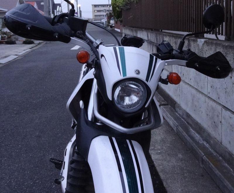 sDSC07011.jpg