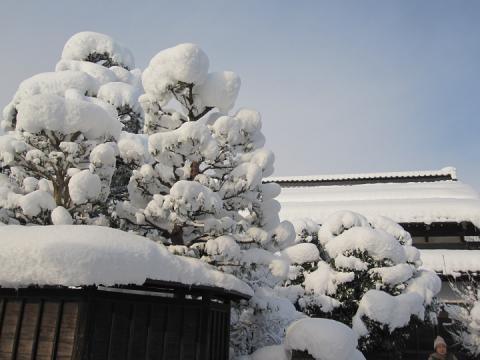 40 Toyama