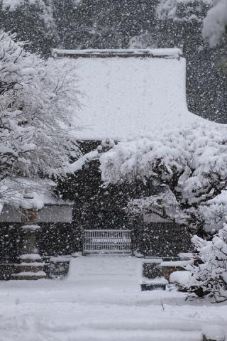 40 北鎌倉 円覚寺