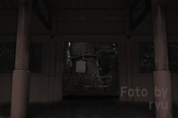 _MG_0409.jpg