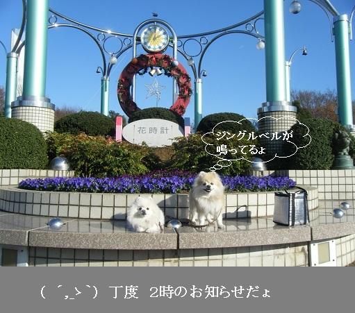 DSCF3590.jpg