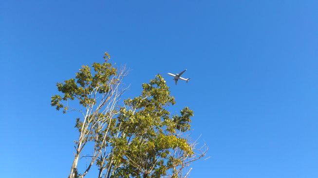飛行機その3