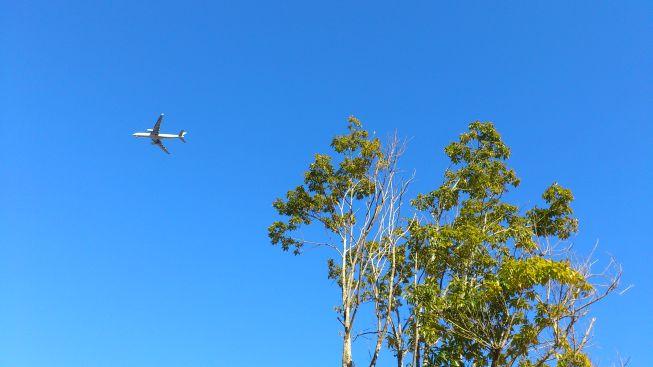 飛行機その4
