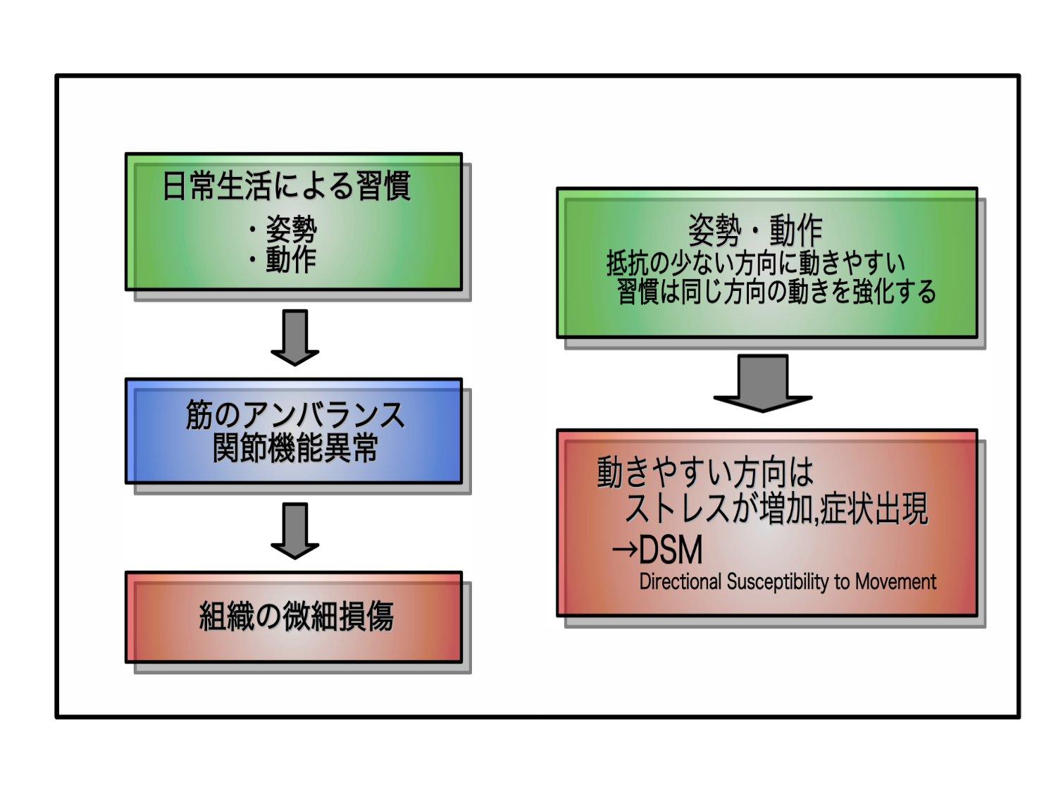 姿勢制御と運動連鎖(運動学的視点から)