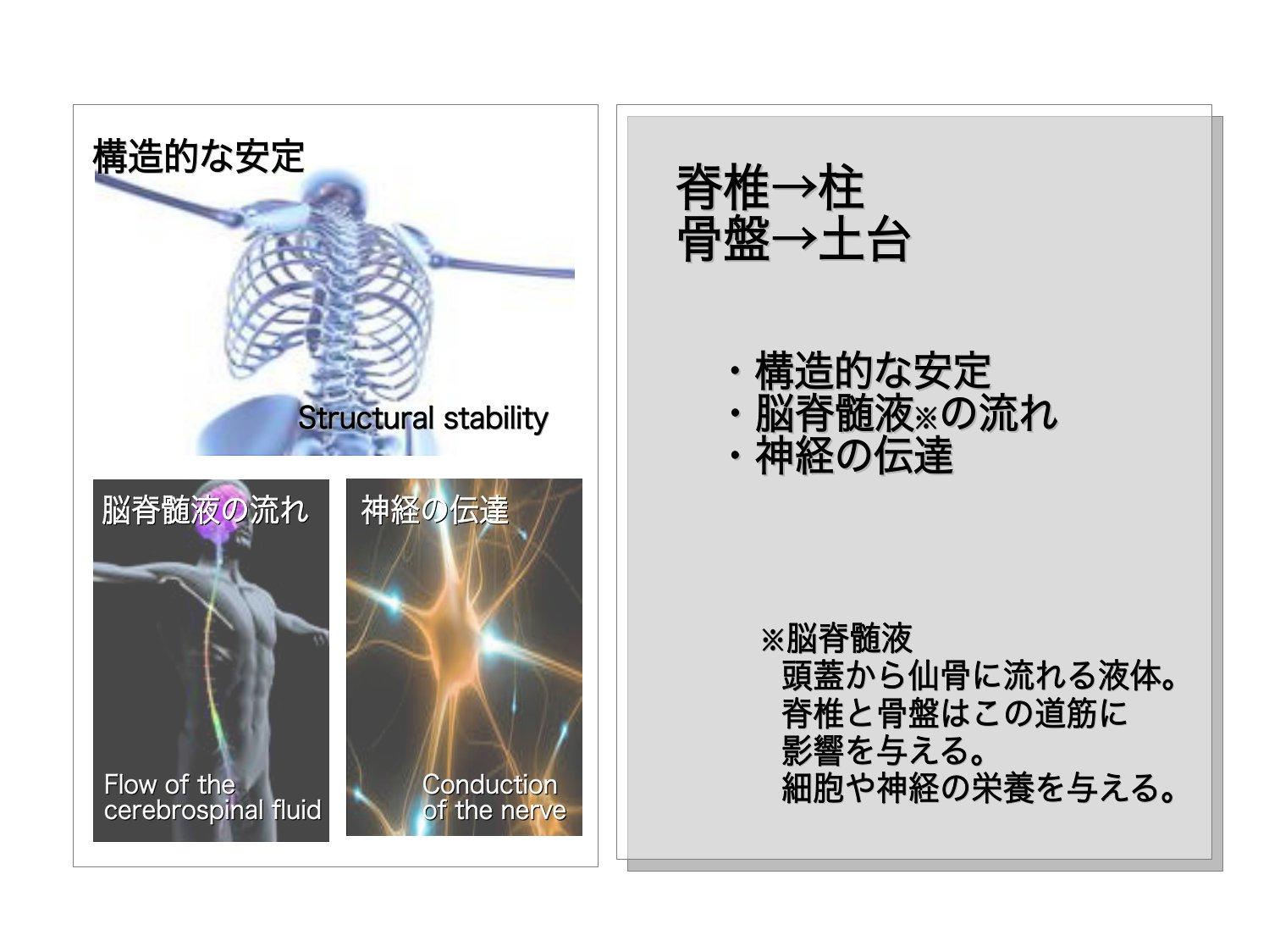 脊椎のアプローチ