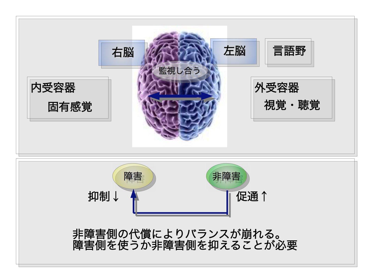 脳のアプローチ